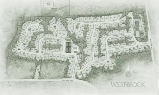 westbrook3